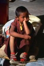tibetan kid monk