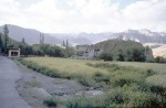Alchi Ladakh's Hidden Buddhist Sanctuary