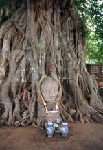 Buddha Face Wat Mahathat