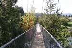 Suspension Bridge Zuckerberg Island