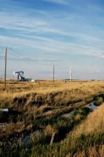Farming Oil Fields Alberta