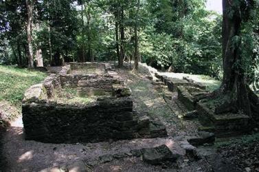 Grupo C Palenque