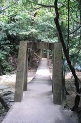 Puente de los Murciélagos - Bats Bridge