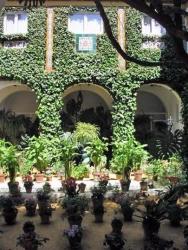 Patio Jardín, Sevilla